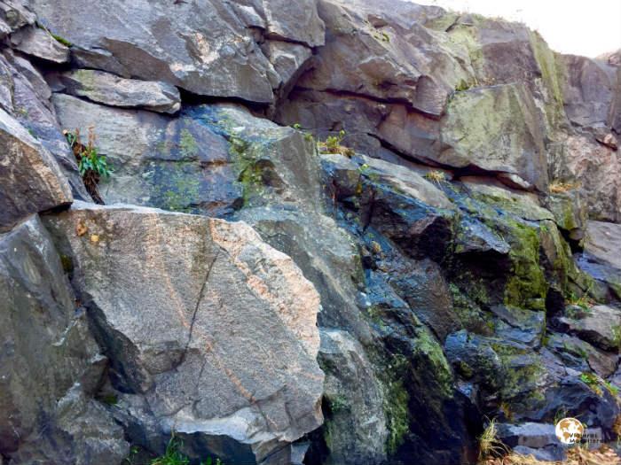 Roca de Helsinki
