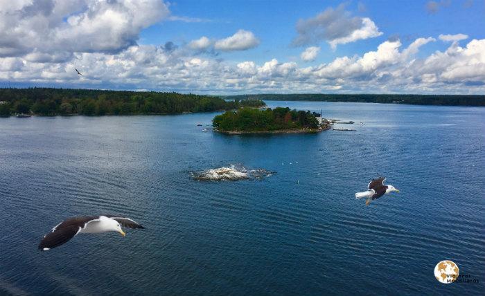 todo un día navegando por el báltico